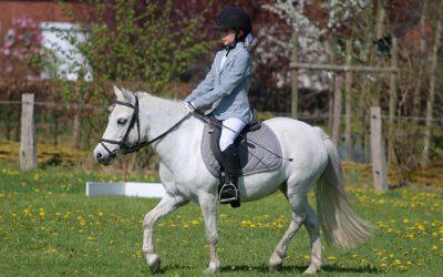Ponyconcours op 9 april 2017