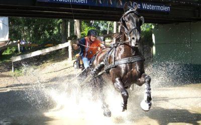 Samengestelde Menwedstrijd Haaksbergen 26 en 27 mei