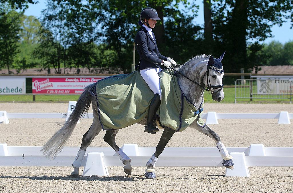 Eerste Pony Zilveren Ster geslaagd