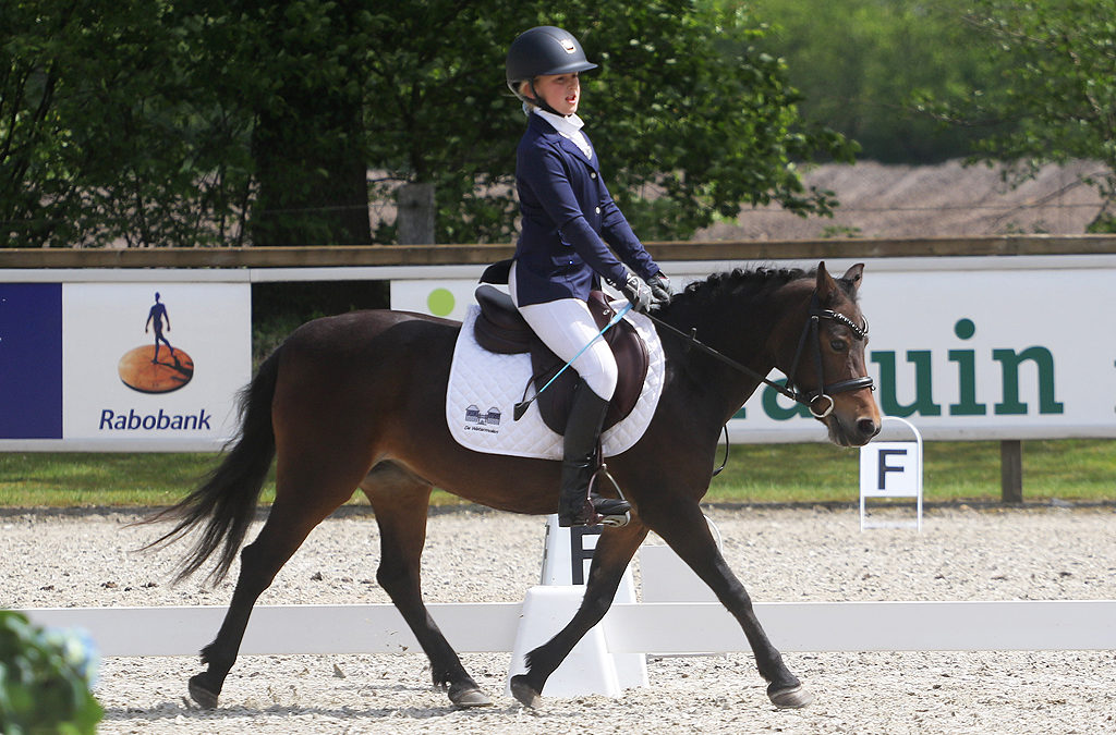 Pony Zilveren Ster 2019