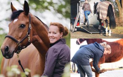 Lezing paard & gedrag op 28 februari